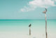deux pelicans sur la plage d'Holbox au Mexique